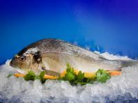 Замразена риба Ципура пакет