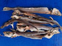 Други рибни продукти Чироз патасу